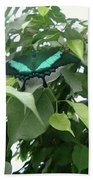 Green Banded Butterfly Beach Towel