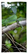 Green Basilisk Lizard Beach Towel