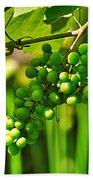 Green Berries Beach Towel by Kaye Menner