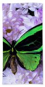 Green Butterfly And Mums Beach Towel
