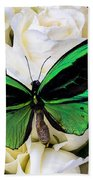 Green Butterfly On White Roses Beach Towel