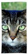 Green Cat Eyes In Summer Grass Beach Towel