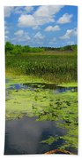 Green Cay Nature Preserve Beauty Beach Towel