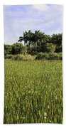 Green Cay Wetlands Beach Towel