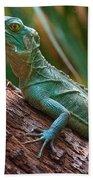 Green Crested Basilisk Beach Towel