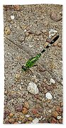 Green Dragon Beach Towel