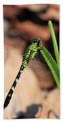 Green Dragonfly On Grass Square Beach Towel