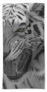 Green Eyes In Black And White Tiger Beach Towel