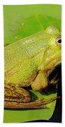 Green Frog 2 Beach Towel