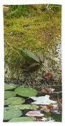 Green Frog Beach Towel