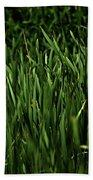 Green Green Grass ... Beach Towel
