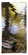Green Head Mallard Duck Beach Towel