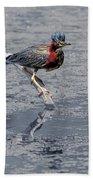 Green Heron In Swannanoa North Carolina Beach Towel
