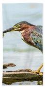 Green Heron Perfection Beach Towel