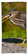 Green Heron Pictures 457 Beach Towel