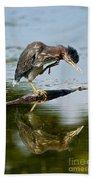 Green Heron Pictures 488 Beach Towel
