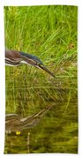 Green Heron Pictures 534 Beach Towel