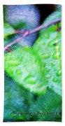 Green Leaf As A Painting Beach Towel
