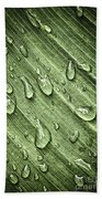 Green Leaf Background With Raindrops Beach Towel