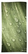 Green Leaf With Raindrops Beach Towel