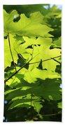 Green Leaves Canvas Beach Towel