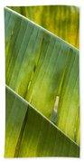 Green Leaves Series 14 Beach Towel