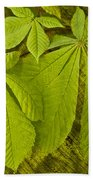 Green Leaves Series Beach Towel by Heiko Koehrer-Wagner