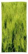 Green Nature Beach Towel