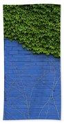 green on blue IMG 0964 Beach Towel