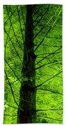 Green On Green Beach Towel