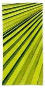Green Palm Frond Beach Towel