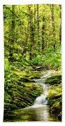 Green River No2 Beach Towel