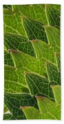 Green Scales Of A Dragon Beach Towel