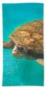 Green Sea Turtle Surfacing Beach Towel