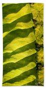 Green Silk 02 Beach Towel
