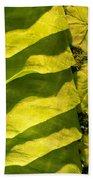 Green Silk 03 Beach Towel