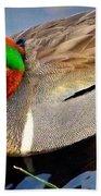Green Winged Teal  Duck  Beach Towel