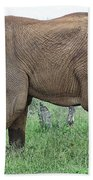 Greener Pastures-after The Rains Beach Towel