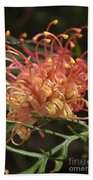 Grevillea  Superb Beach Towel