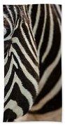 Grevy's Zebra 4 Beach Towel