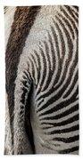Grevy's Zebra 5 Beach Towel