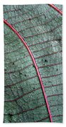 Grey Leaf With Purple Veins 2 Beach Towel