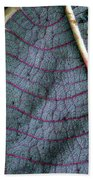 Grey Leaf With Purple Veins Beach Towel