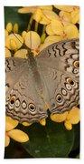 Grey Pansy Butterfly Arizona Beach Towel