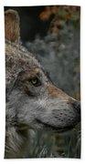 Grey Wolf Profile 3 Beach Towel