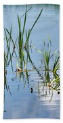 Greylake Reflections Beach Towel