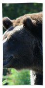 Grizzly-7755 Beach Towel