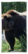 Grizzly-7756 Beach Towel