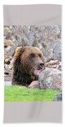 Grizzly Bear 02 Postcard Beach Towel