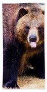 Grizzly Bear 1 Beach Towel